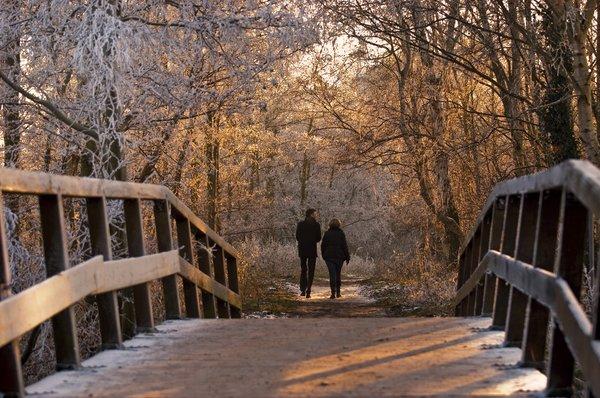 winter park speed dating